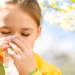 Allergy Essentials Course